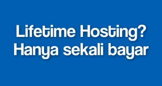Lifetime.Hosting Deluxe (12 Websites/12 GB Storage)